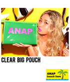 ANAPロゴビニールケース『ANAP』ロゴビーチアイテム
