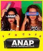 『ANAP』ロゴミニペンケース