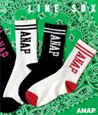 『ANAP』ロゴ2本ラインリブソックス